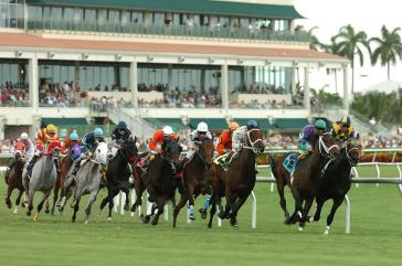 Gulfstream Park Horse Racing | Online Horse Betting