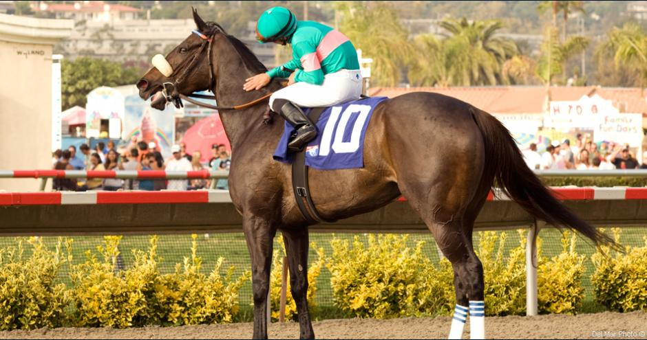 Thoroughbred Ownerview Thoroughbred Owners Thoroughbred